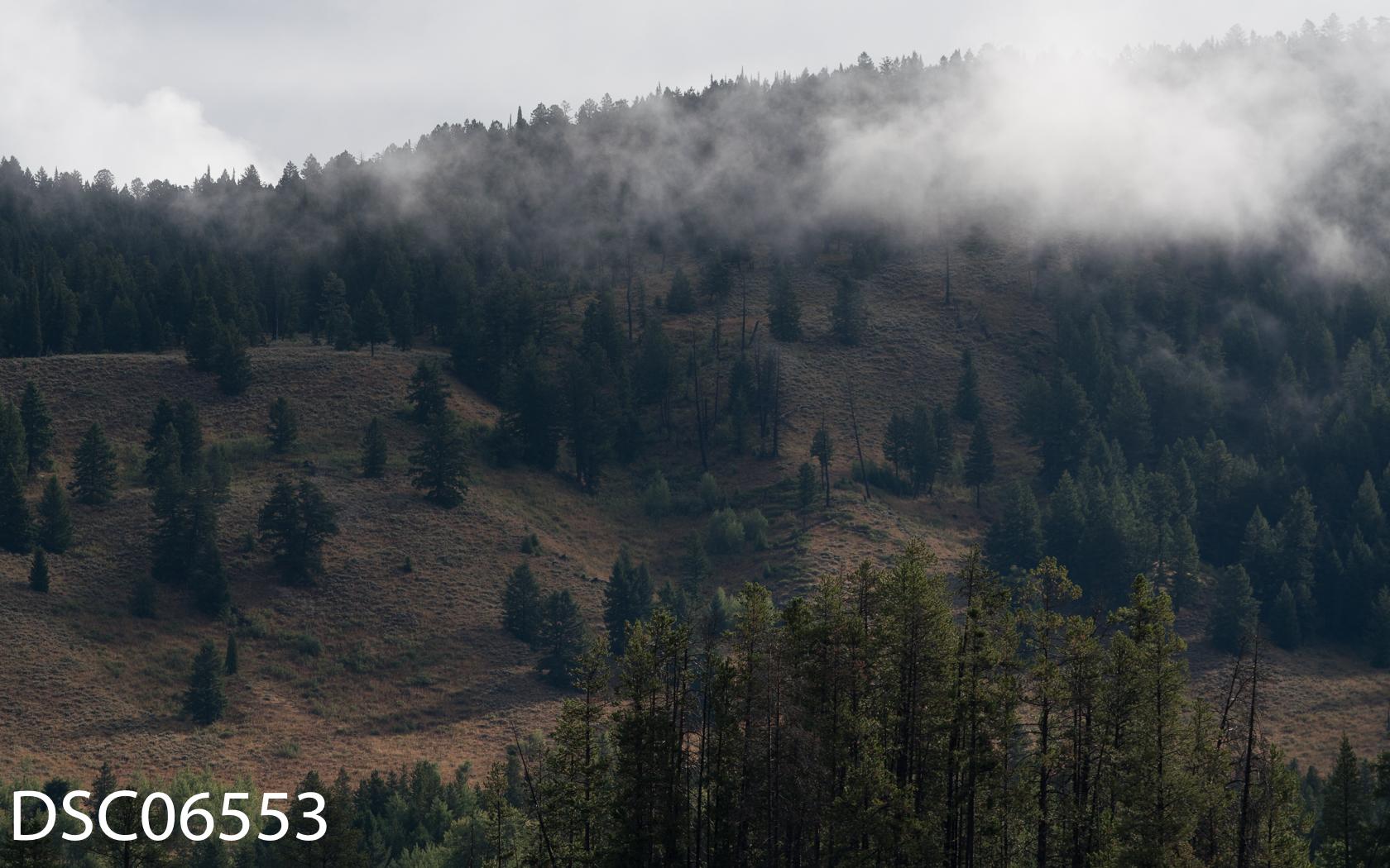 Landscapes-27.jpg