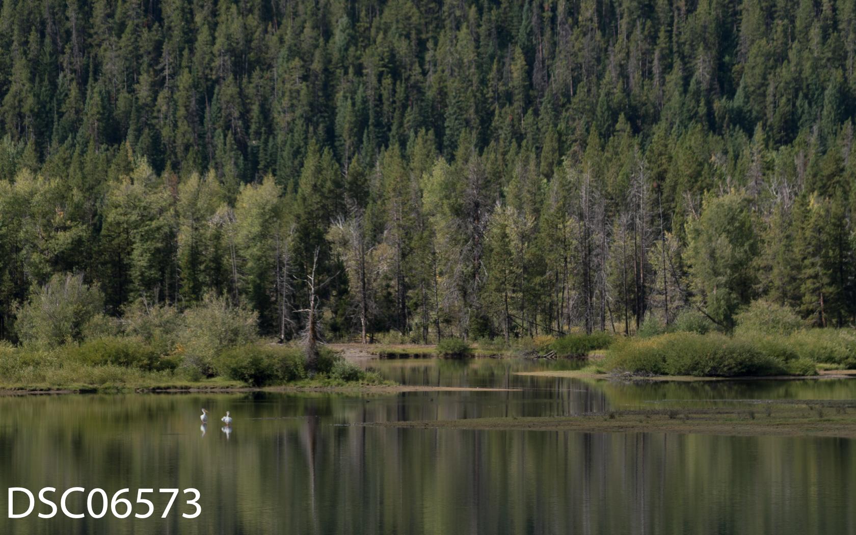 Landscapes-29.jpg