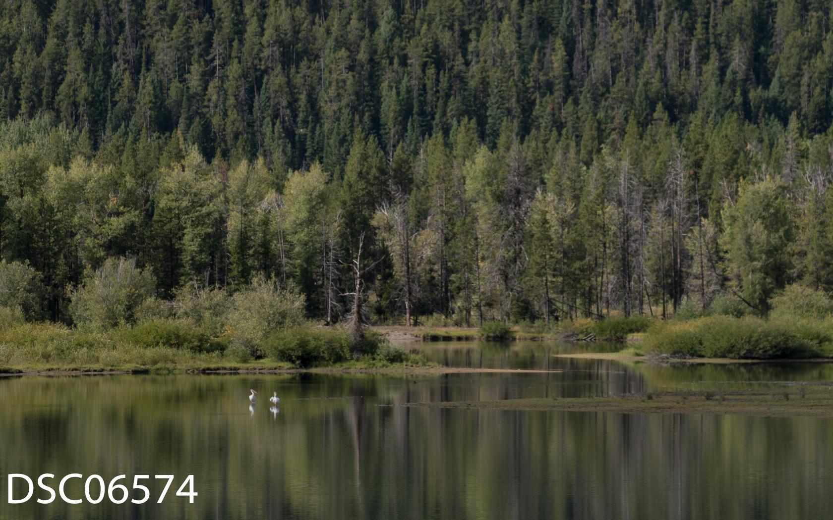 Landscapes-30.jpg