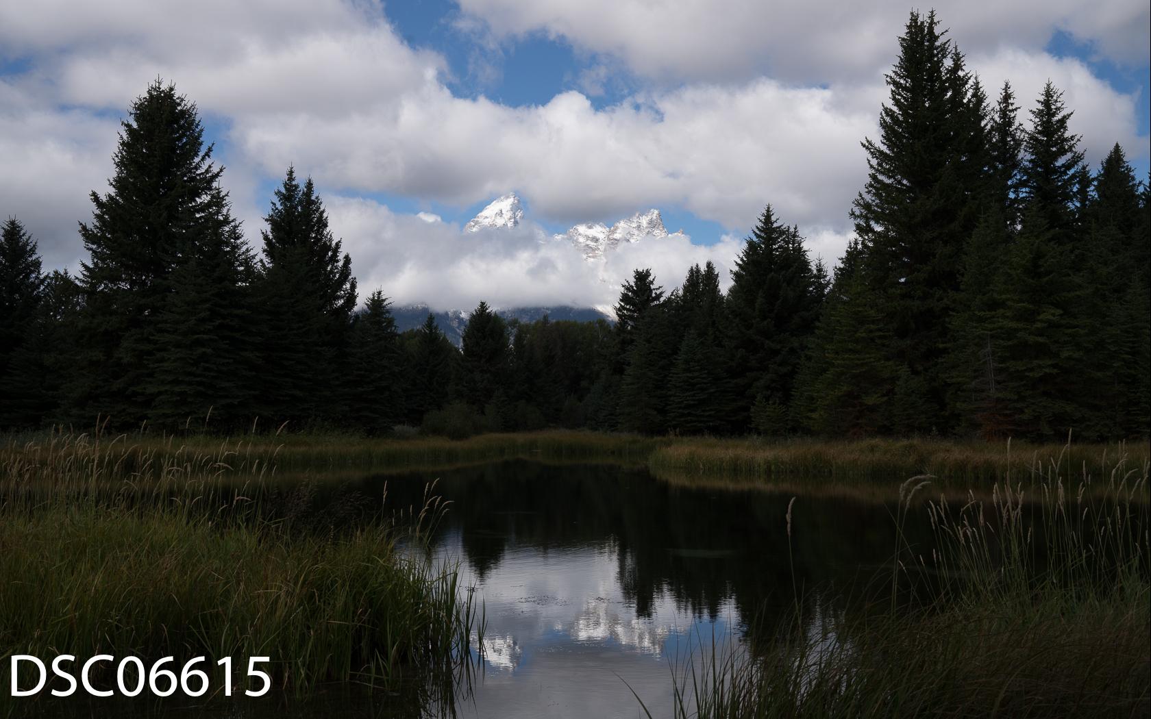 Landscapes-31.jpg