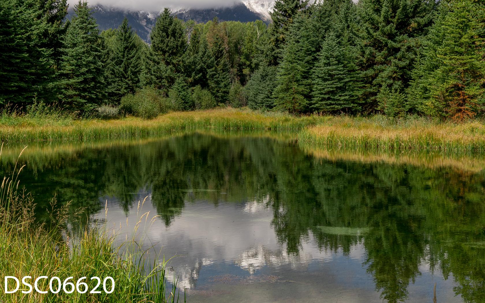 Landscapes-32.jpg