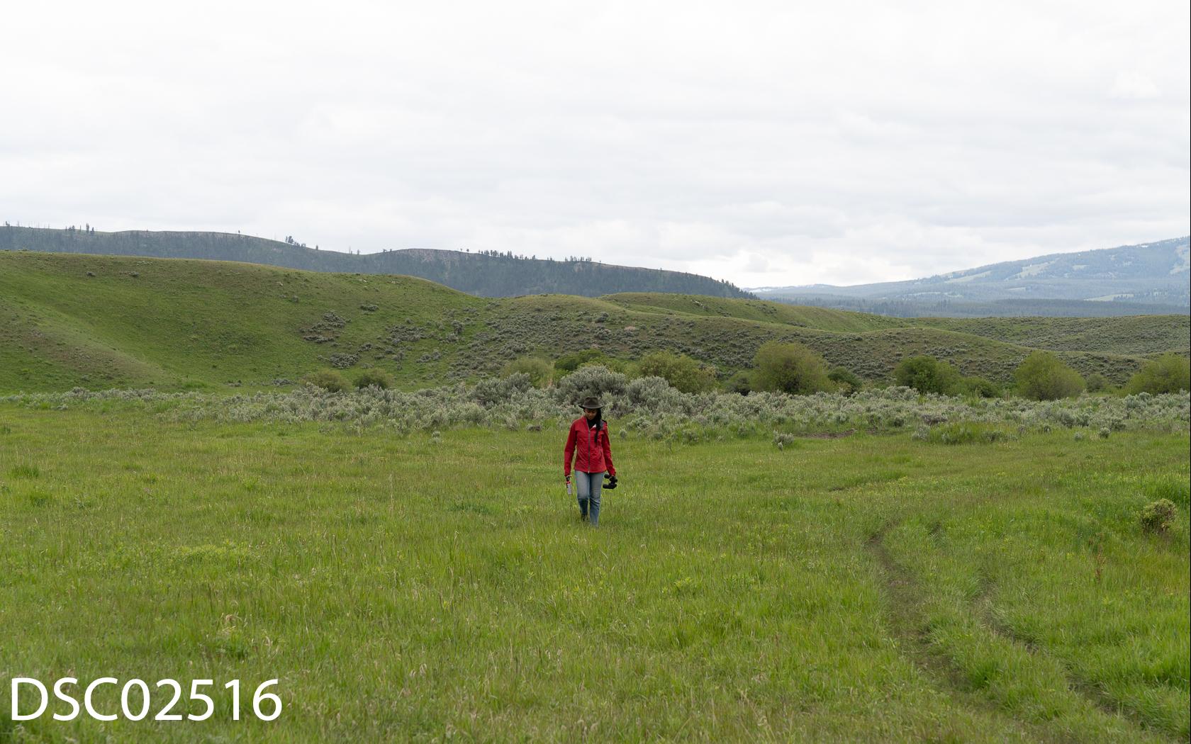 Rae-26.jpg