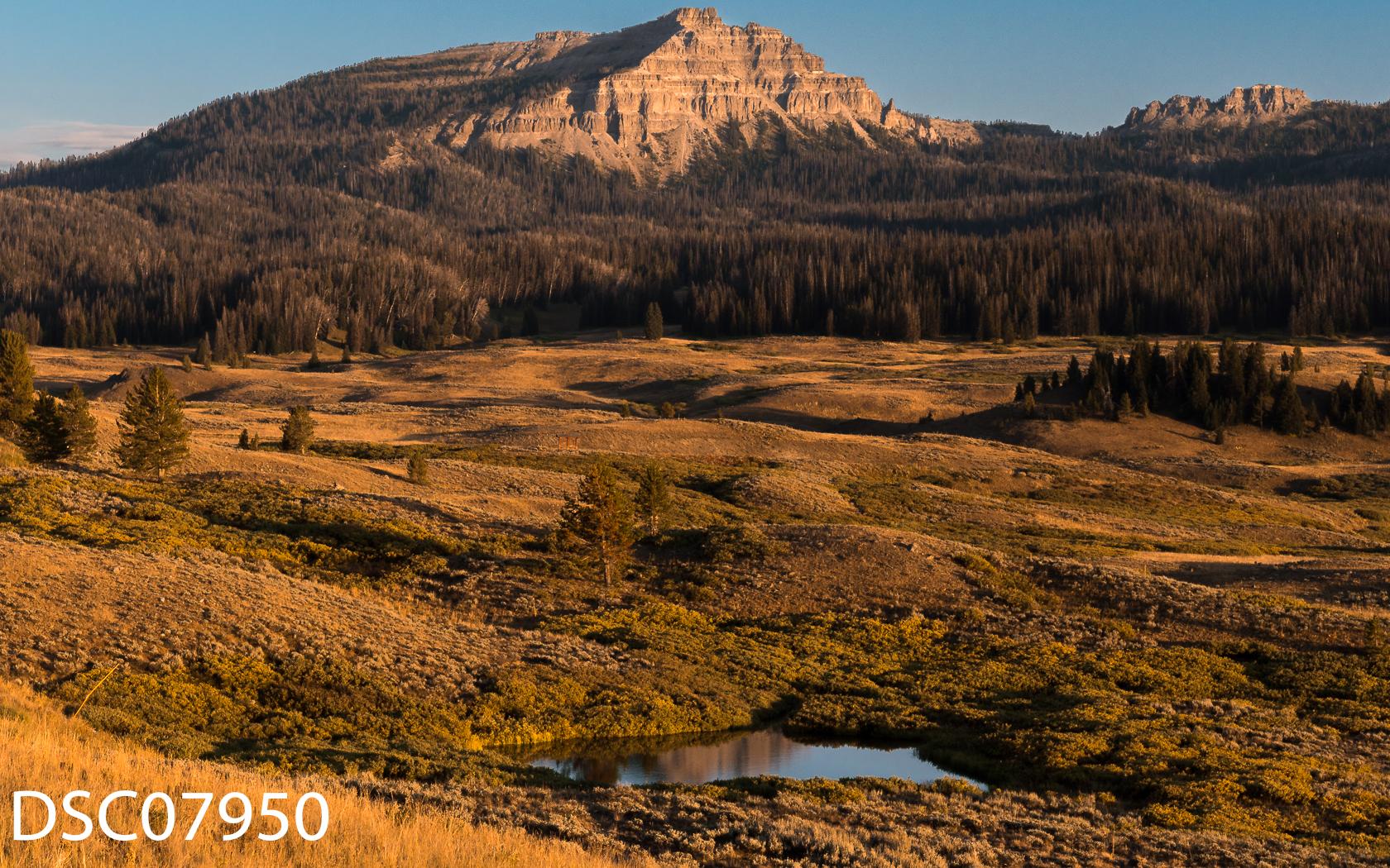 Landscapes-43.jpg