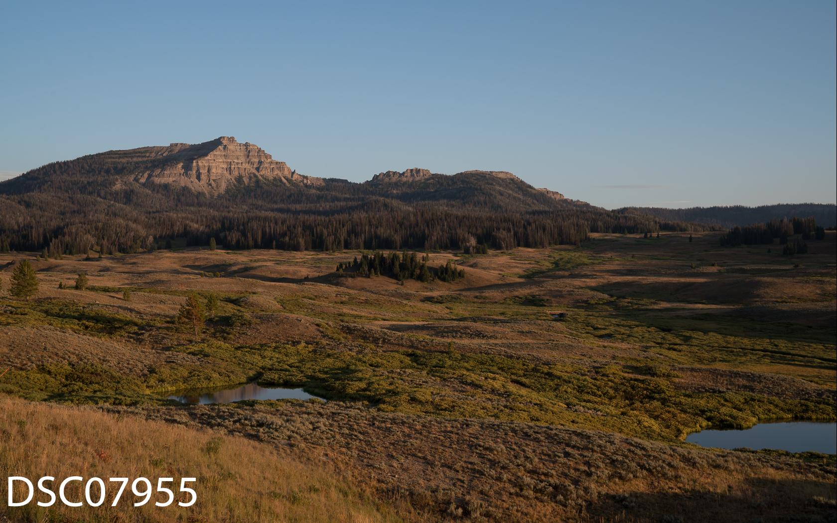 Landscapes-44.jpg