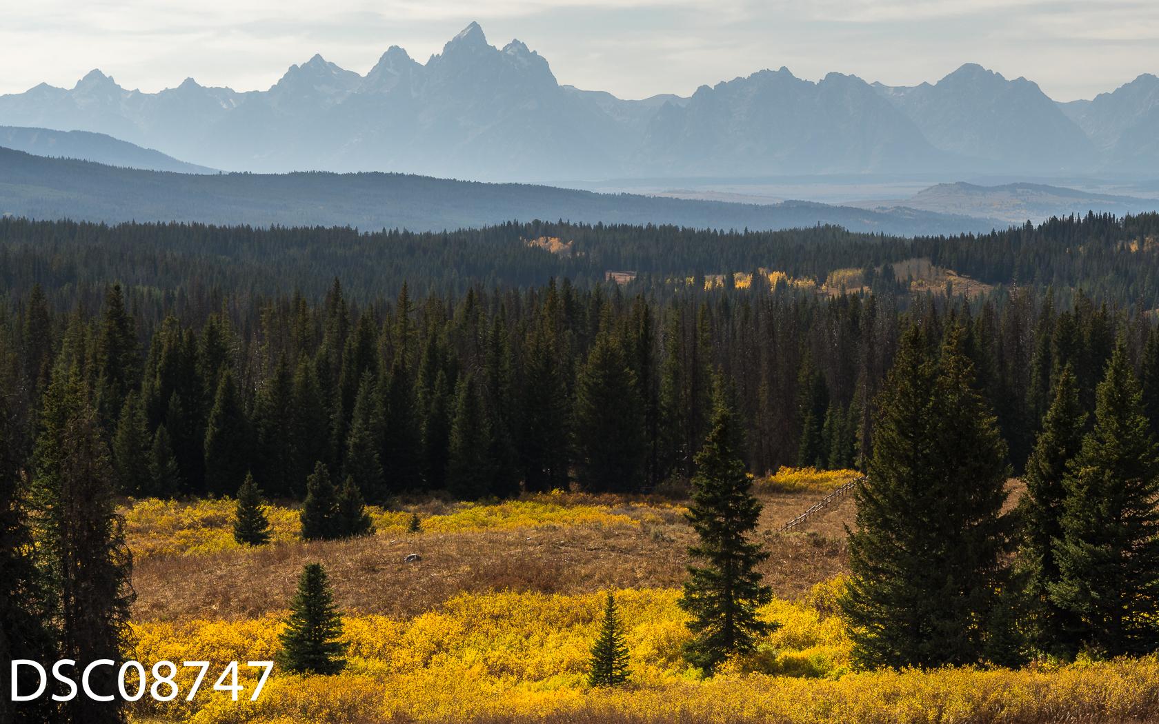 Landscapes-45.jpg