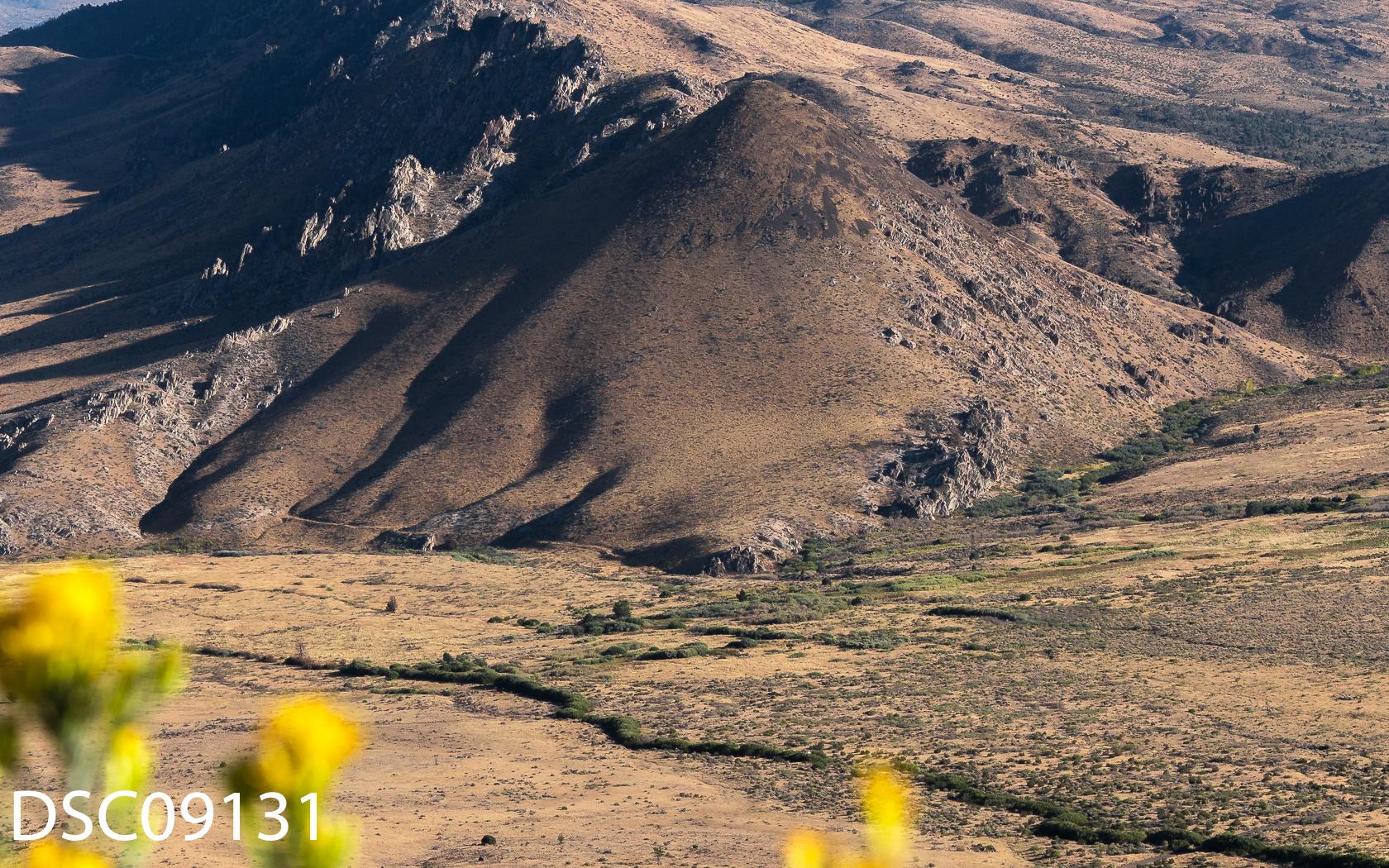 Landscapes-46.jpg