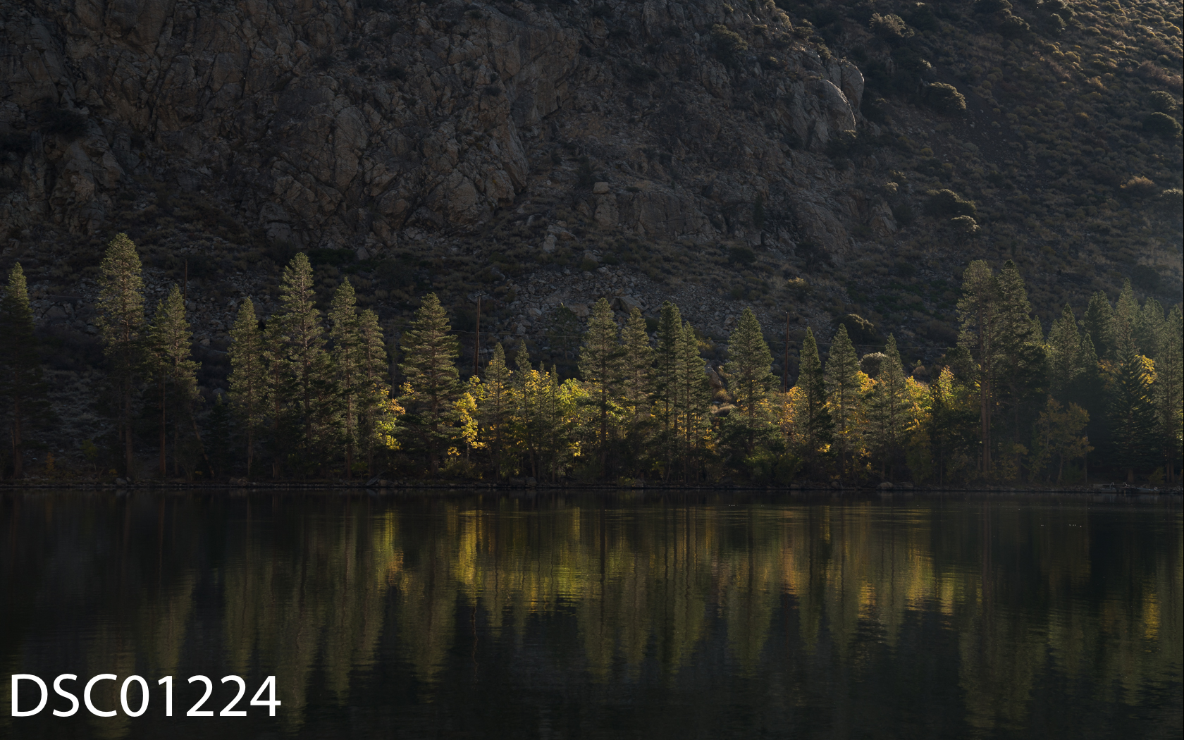 Landscapes-59.jpg