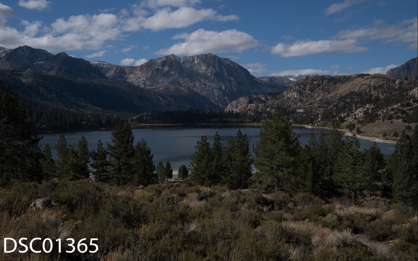Landscapes-61.jpg