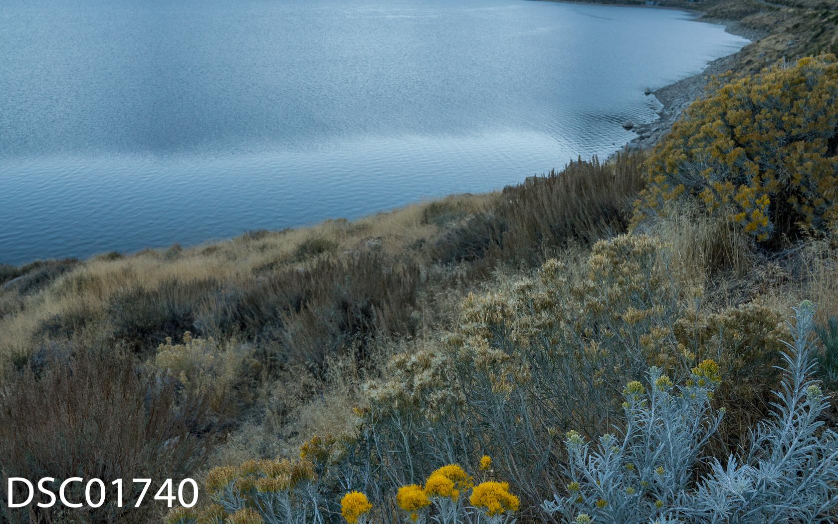 Landscapes-63.jpg