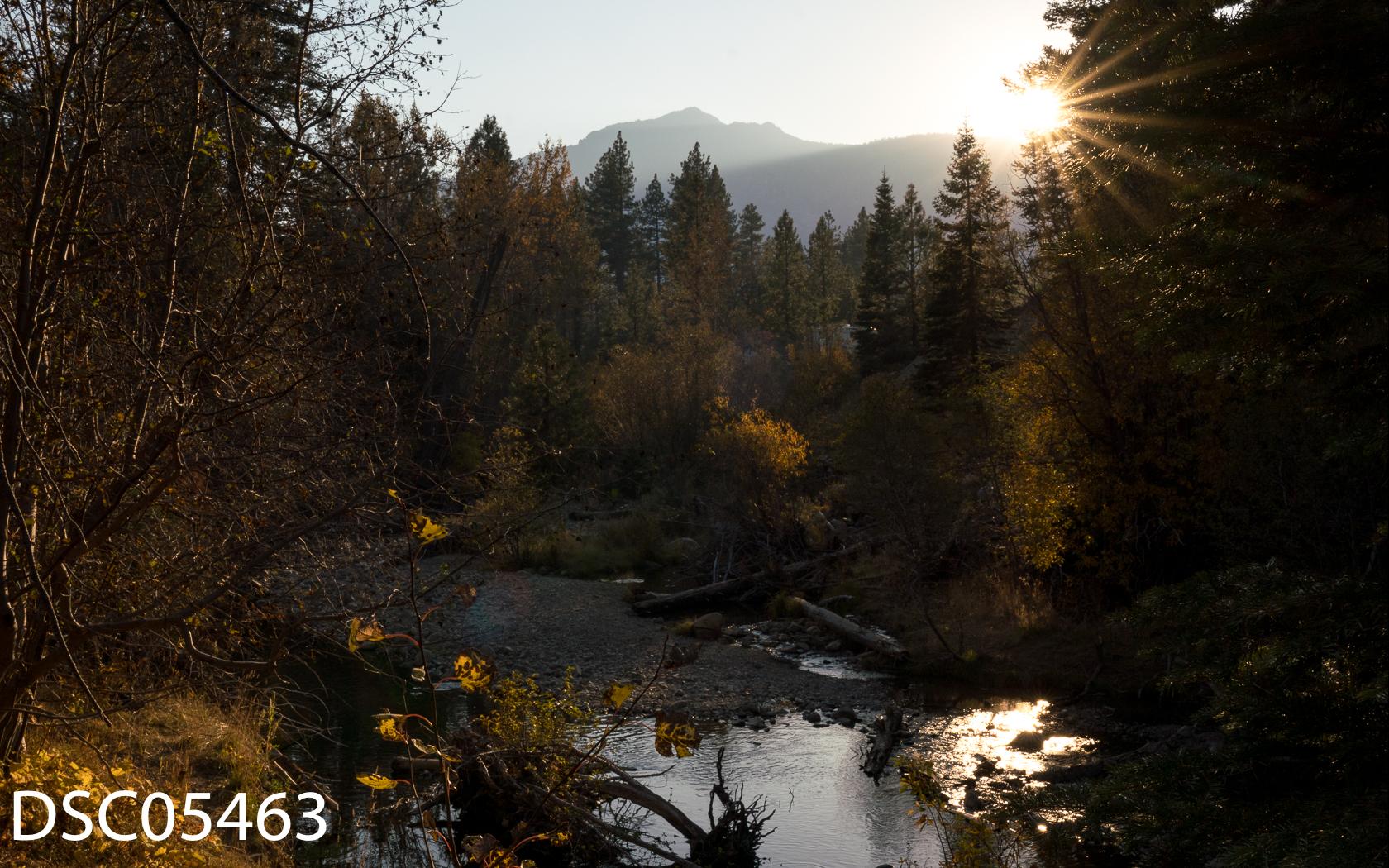 Landscapes-72.jpg