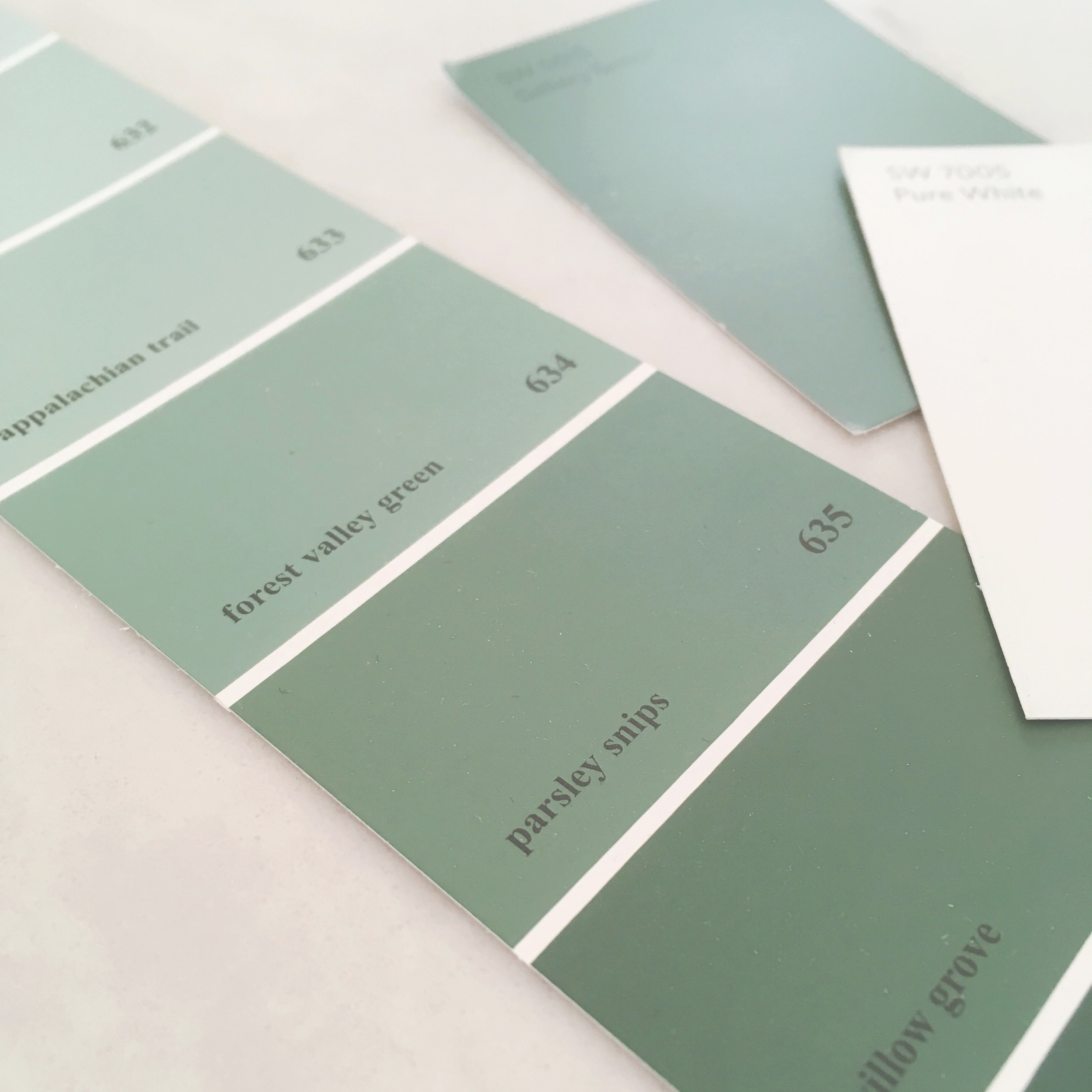 Benjamin Moore #635 Parsley Snips from the Classic Color Collection. Sherwin Williams SW0015 Gallery Green can be seen as the rectangular swatch in the top right.