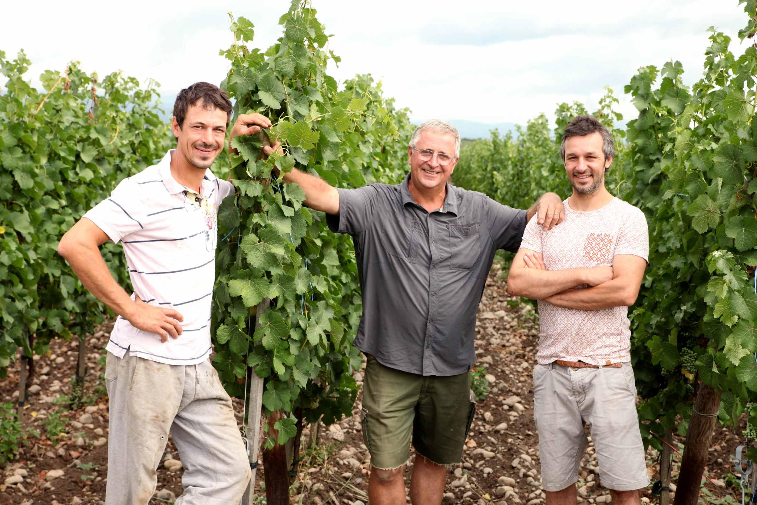 André, Sébastien et Martin, viticulteurs -