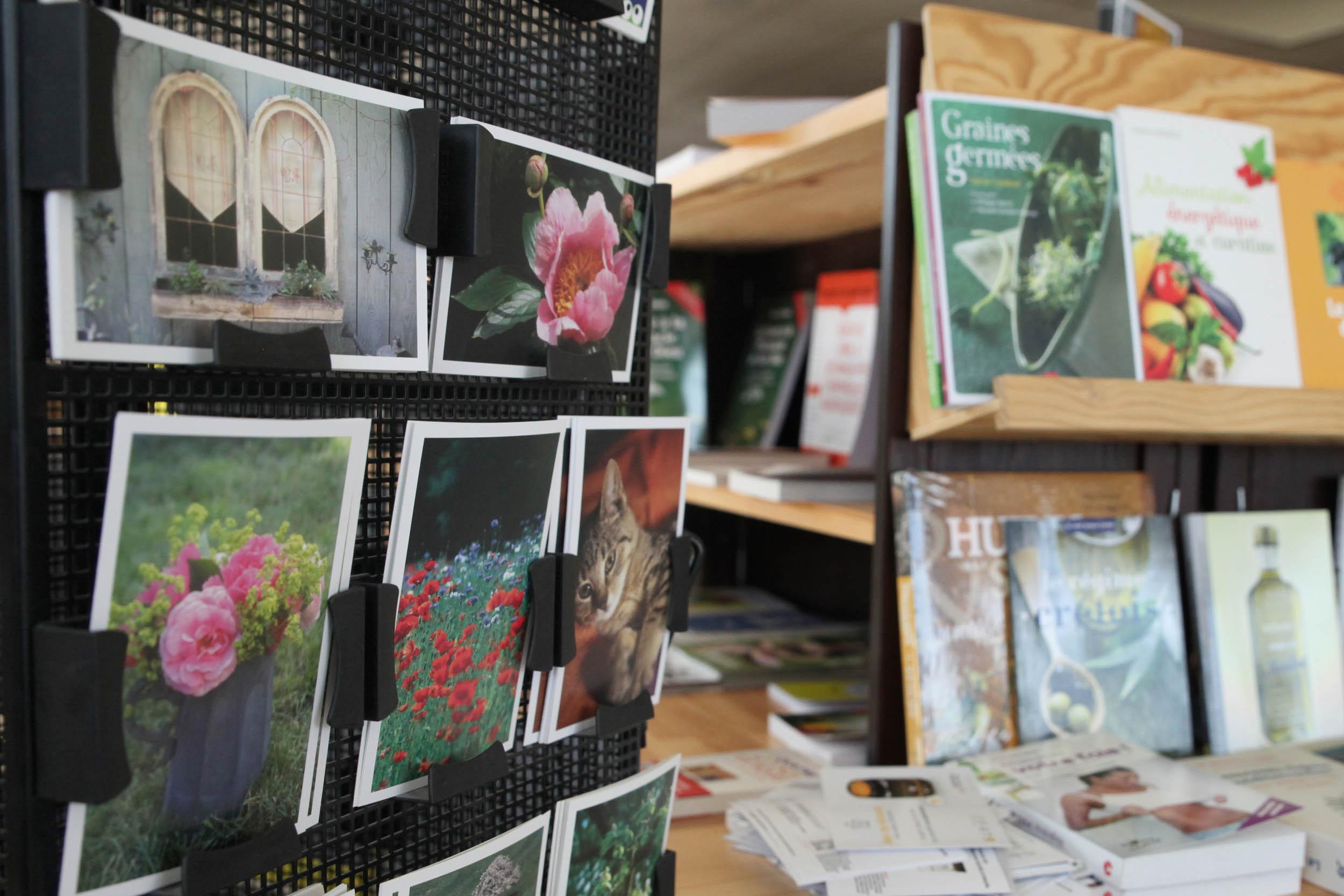carte postale librairie arbrea papillon souffel.jpg