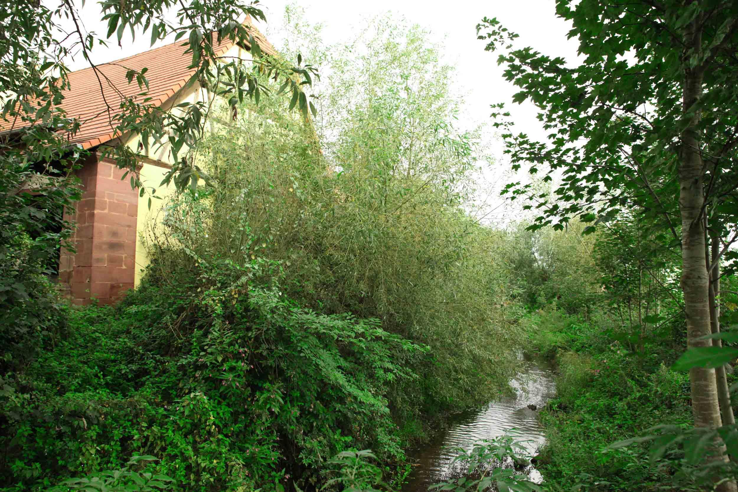 moulin-des-peupliers-2.jpg