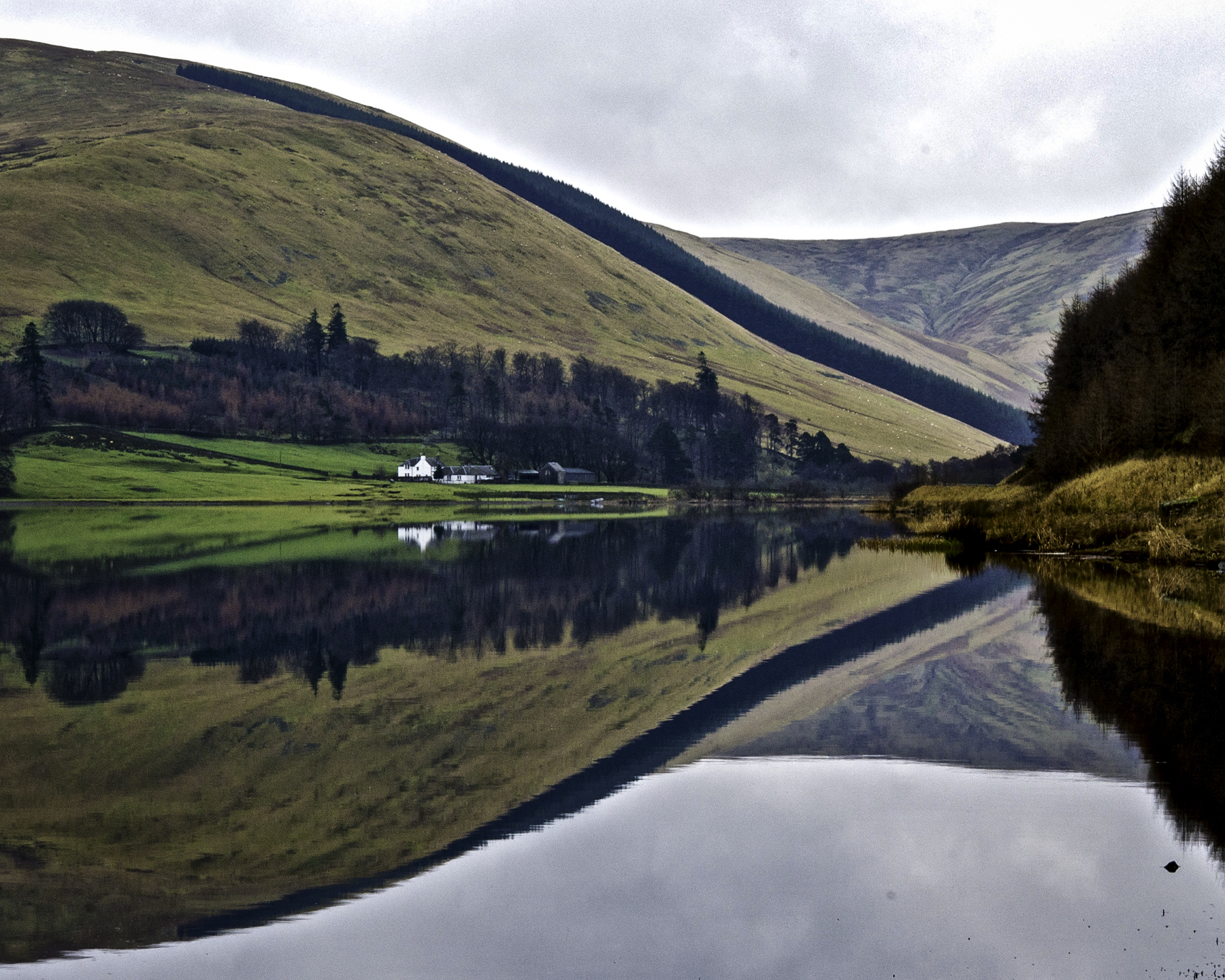 Loch of the Lowes, Yarrow Valley
