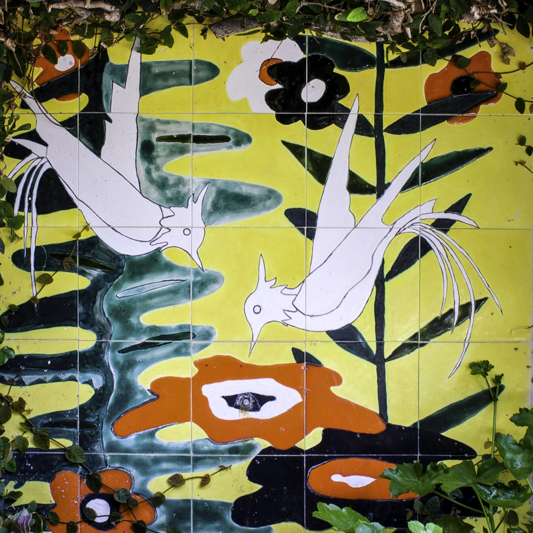 Birds in Paradise, Collioure, France