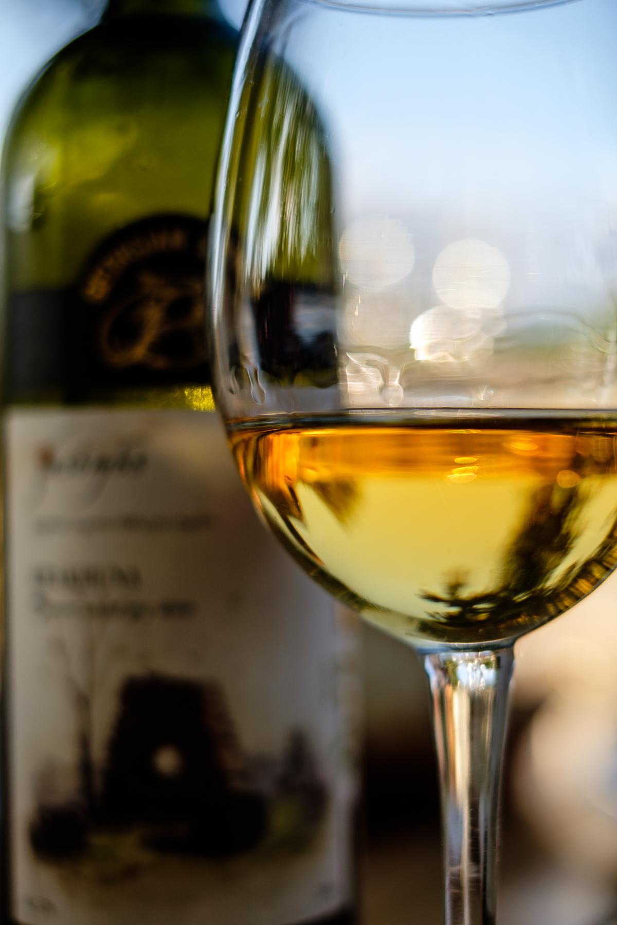 Rkatsiteli, Zangaura Winery, Kakheti