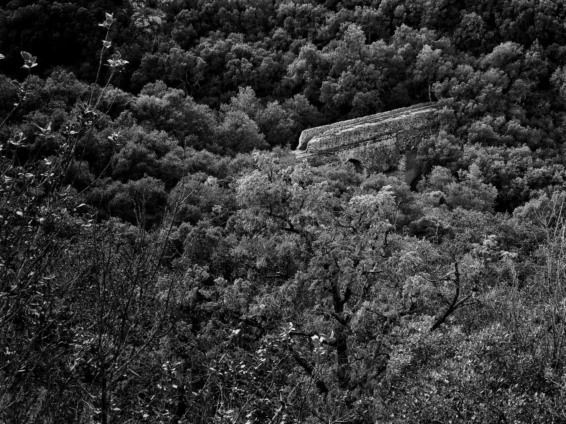 le pont de la Sartanette