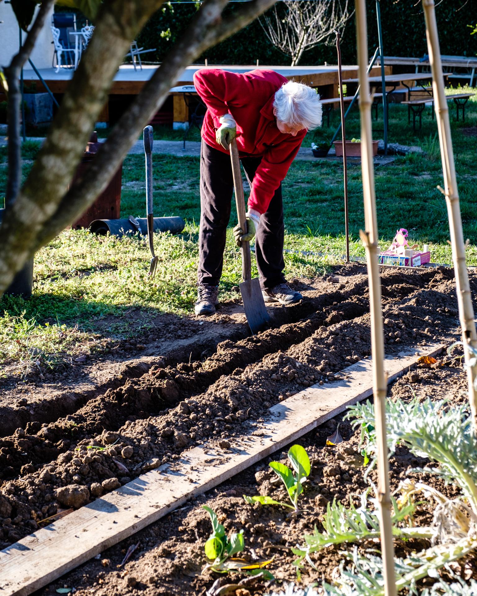 Garden Project - 13 - DSCF5981 copy.jpg