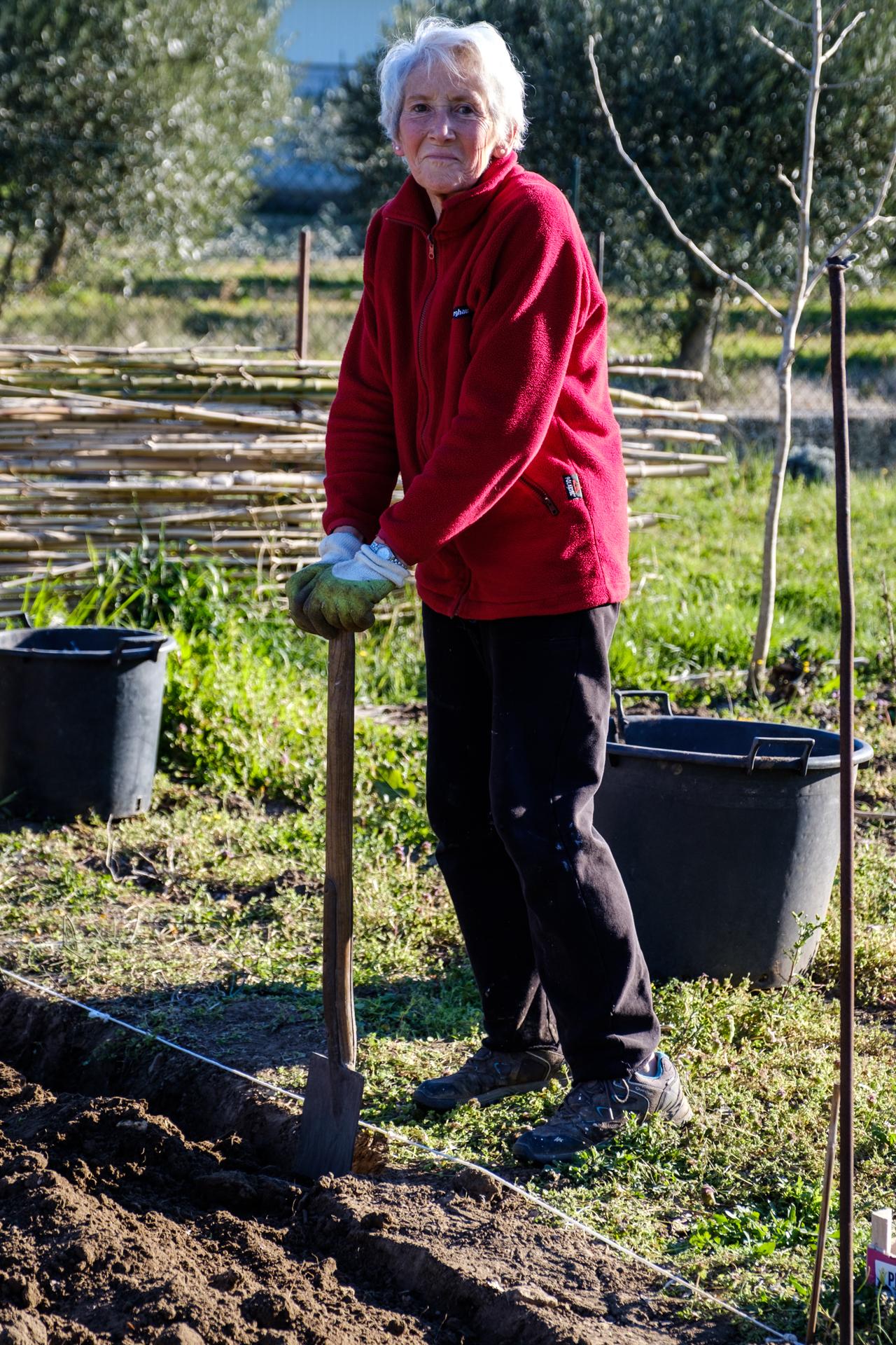 Garden Project - 19 - DSCF5997 copy.jpg