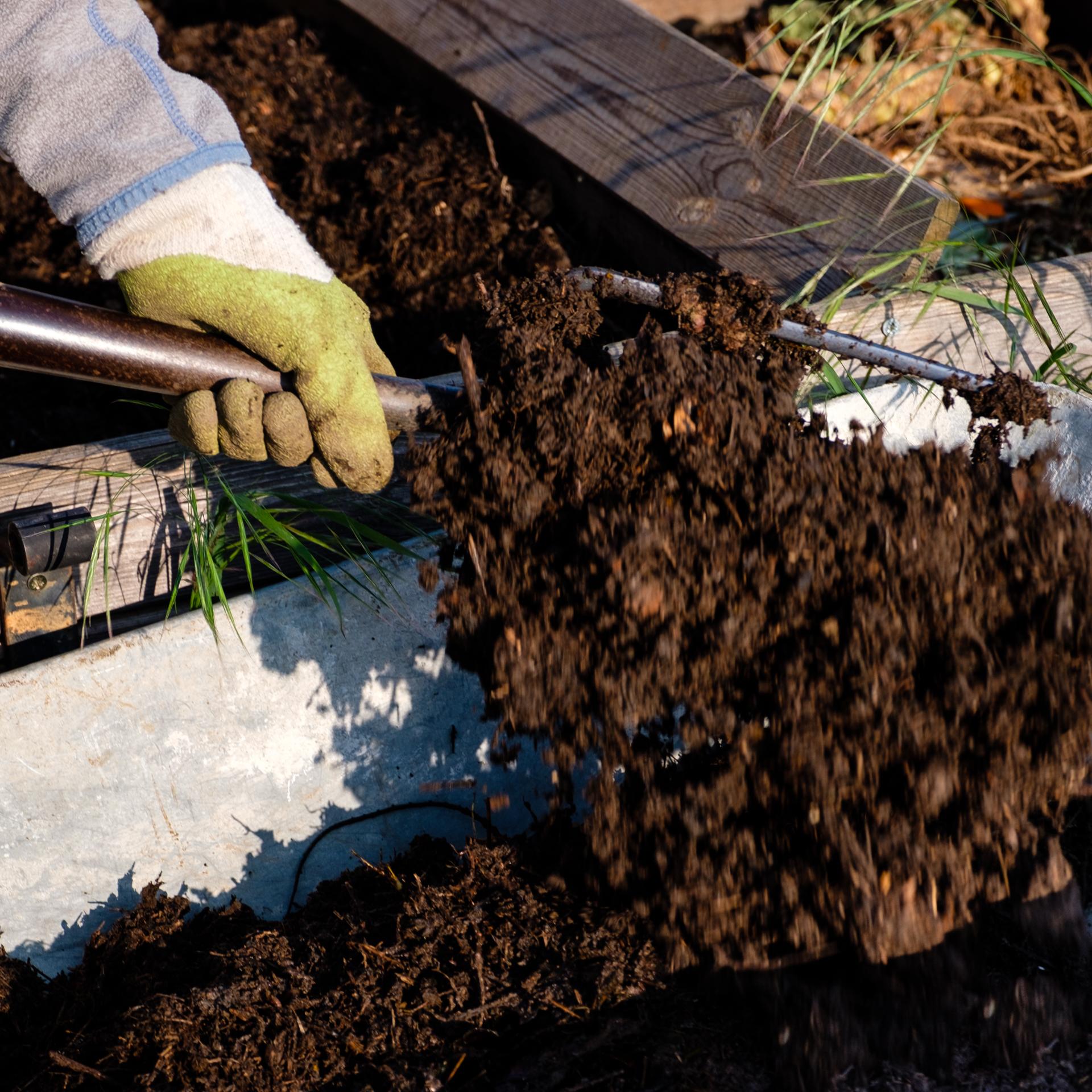 Garden Project - 37 - DSCF6045 copy.jpg