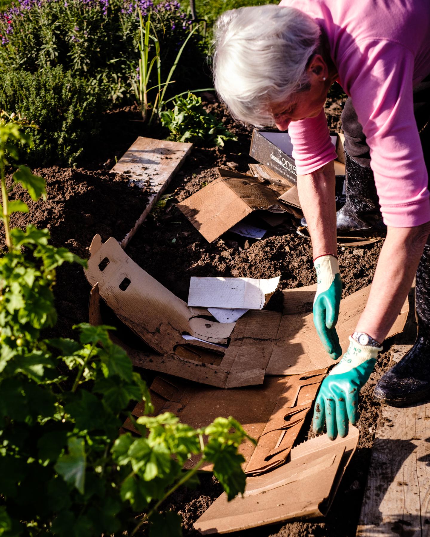 Garden Project - 124 - DSCF6687 copy.jpg