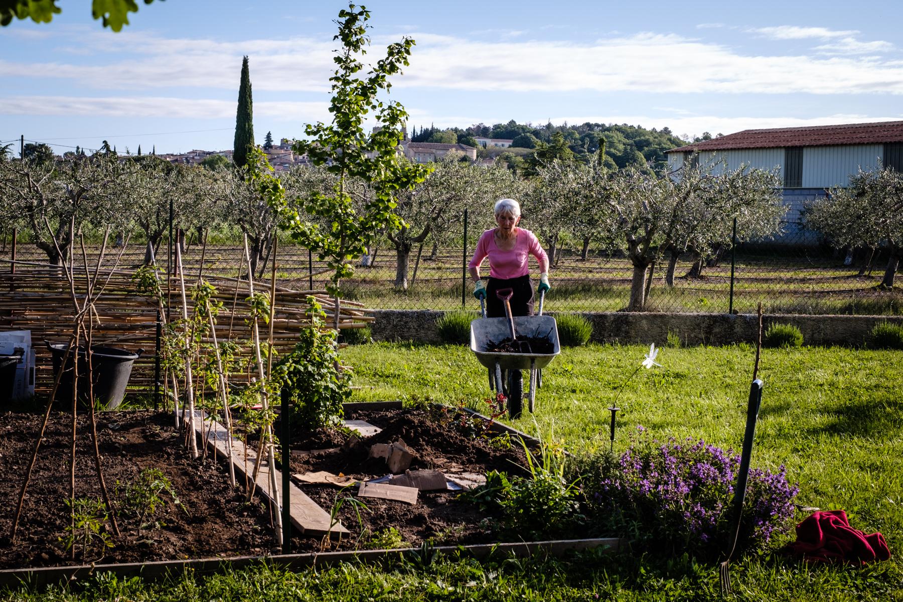 Garden Project - 126 - DSCF6708 copy.jpg