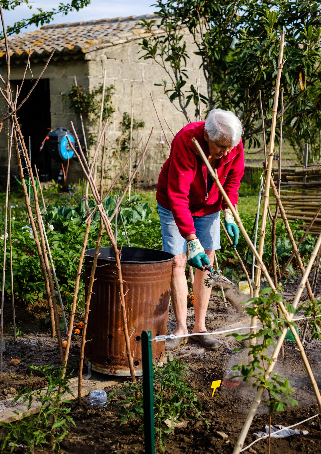 Garden Project - 172 - DSCF7269 copy.jpg