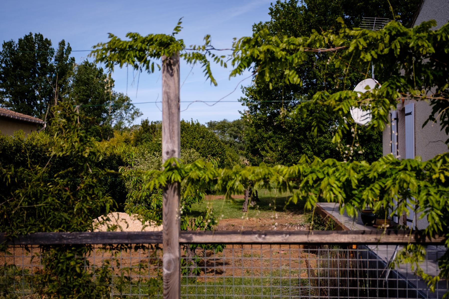 Garden Project - 133 - DSCF6671 copy.jpg
