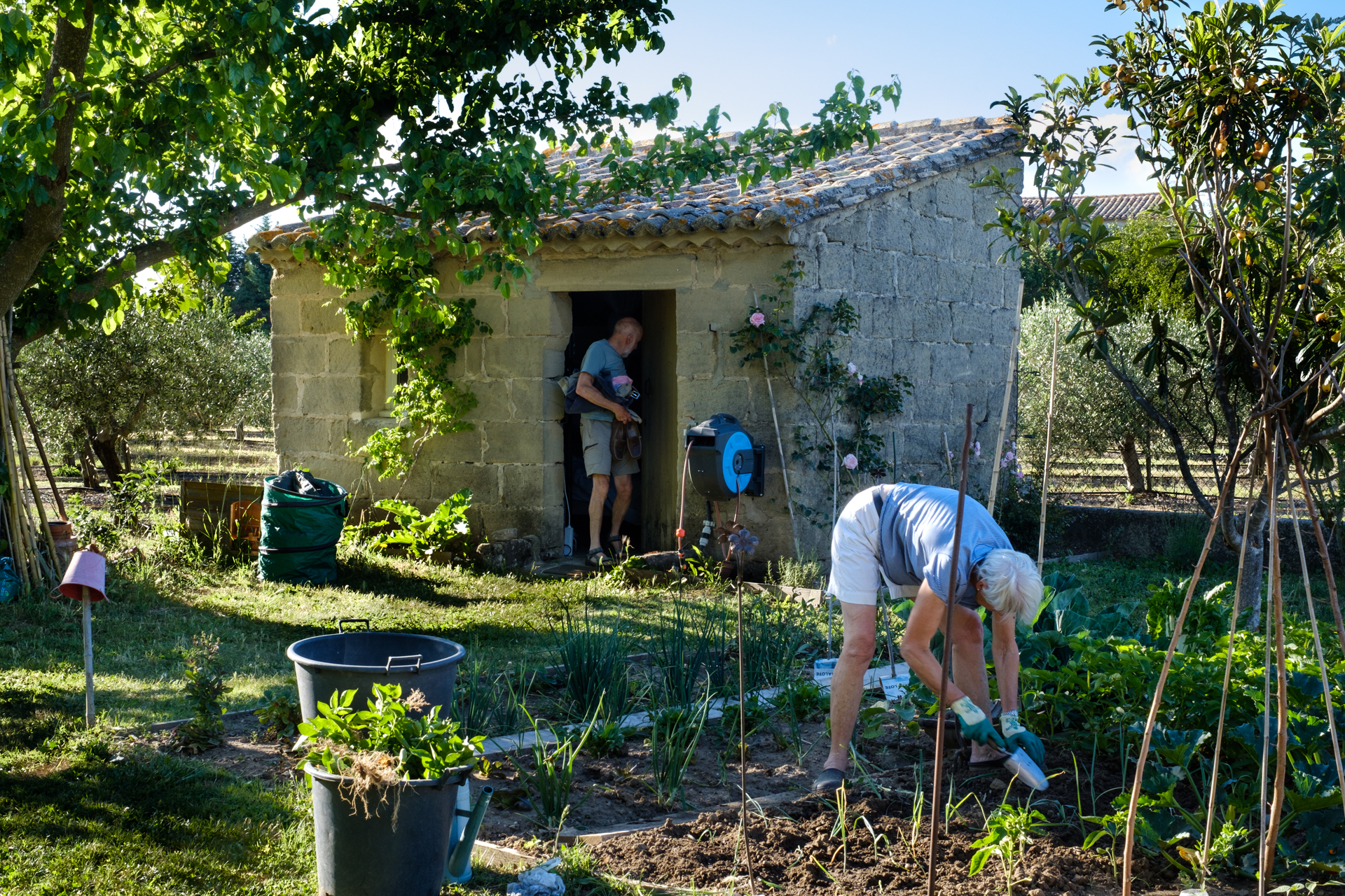 Garden Project - 230 - DSCF7587 copy.jpg