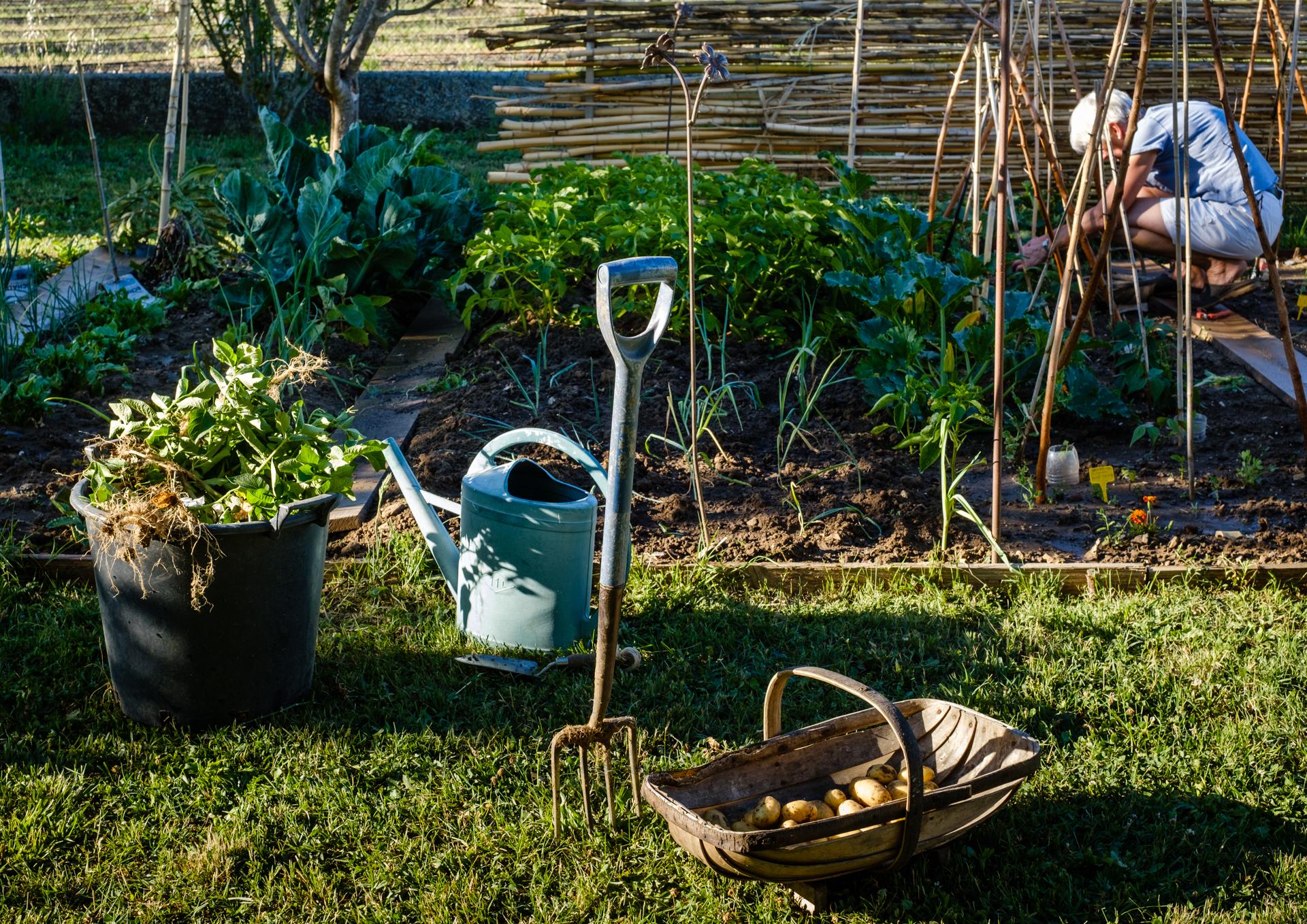 Garden Project - 232- DSCF7608 copy.jpg