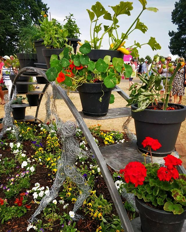 The Hampton court flower show Arch.  I've managed to get hold of a photo of the arch with all the flowers and veg on!  Its great to see a photo of it on display.  The wire figures were created by another artist. #hamptoncourtflowershow #hamptoncourtgardens #arch #Rainbow #Grow  #architecture #blacksmith #flowers #art #tomatoes #metalwork #garden #gardens #summergarden #redflower #wirefigures  #twash #galv #custom #commision #madetosize #joinery #rolled #gardenart