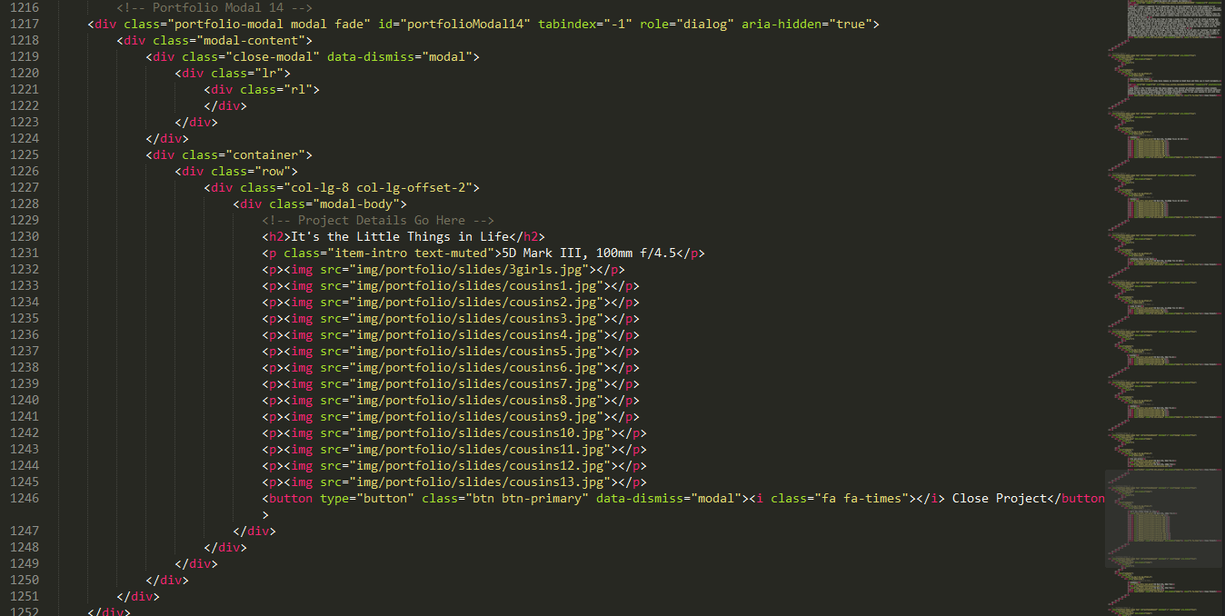 Code for each portfolio modal that I had to add for each photoset.