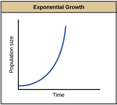 - Exponential growthThe first and most basic model of population dynamics assumes that an environment has unlimited resources and can support an unlimited number of individuals. Although this assumption is clearly unrealistic in many circumstances, there are situations in which resources are in fact plentiful enough so that this model is applicable. What happens to population size over time under exponential growth? If r (intrinsic rate of increase) is negative, the population declines quickly to extinction. However, if r is positive, the population increases in size, slowly at first and then ever more quickly.