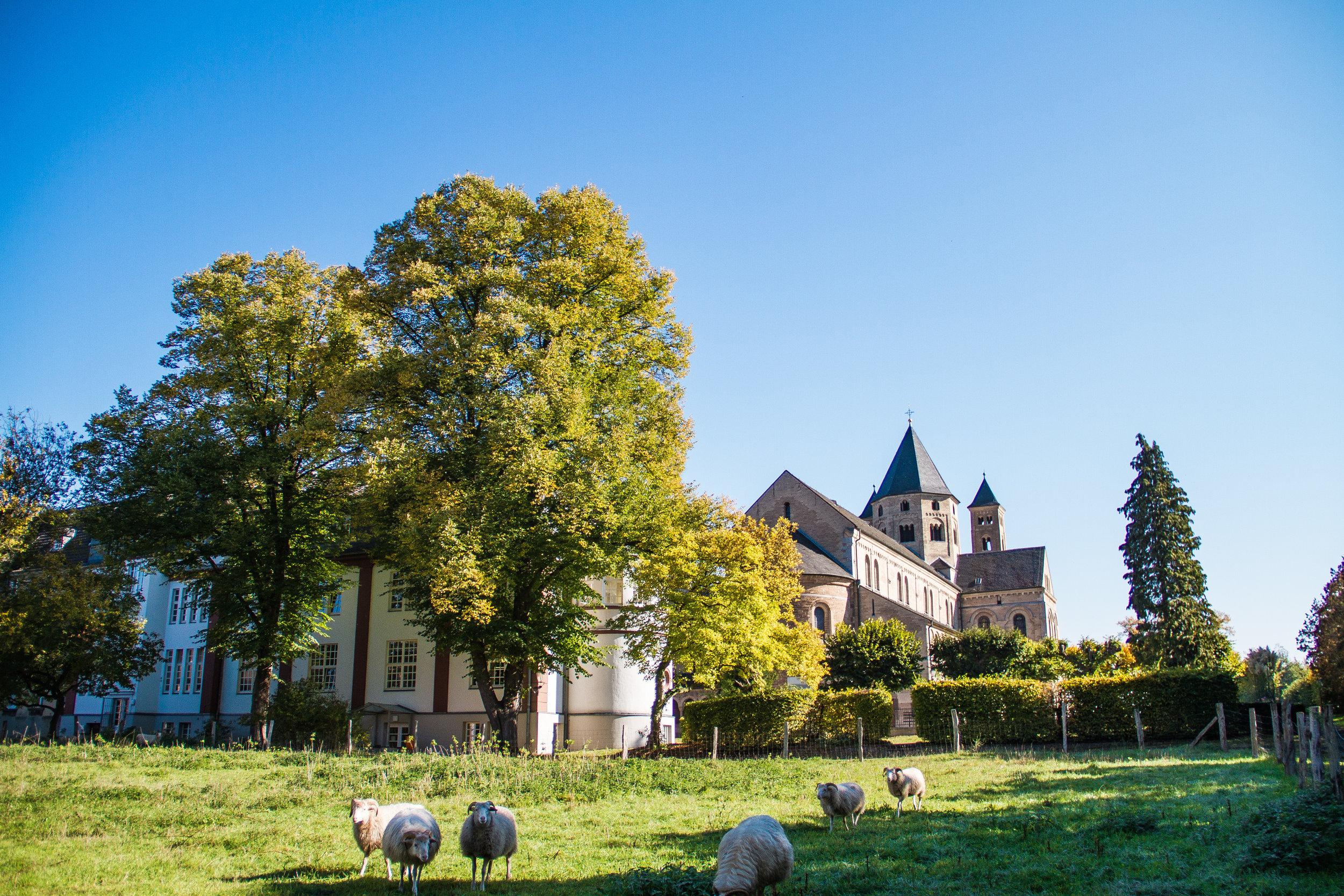 ZVA Akademie der Augenoptik Dormagen Kloster Knechtsteden