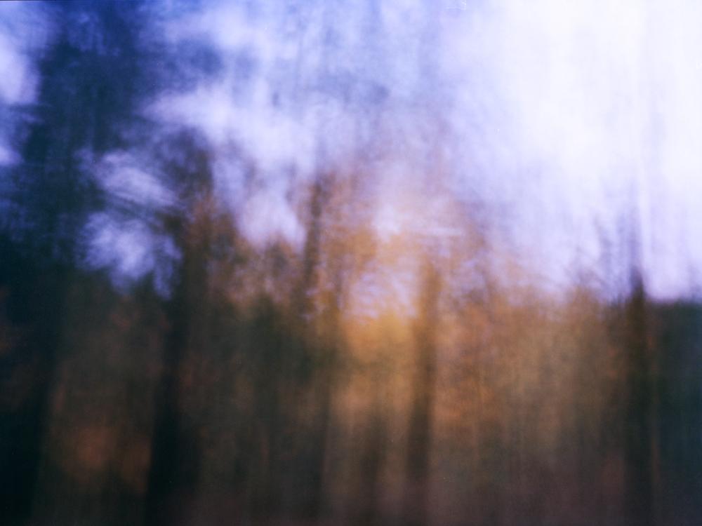 Pinhole2_Forrest_Print.jpg