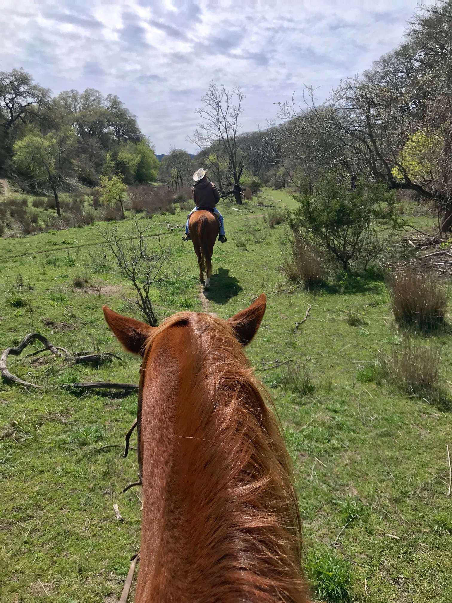 Mayan Dude Ranch Review Texas SF Travel Blogger Lorna Ryan Horses