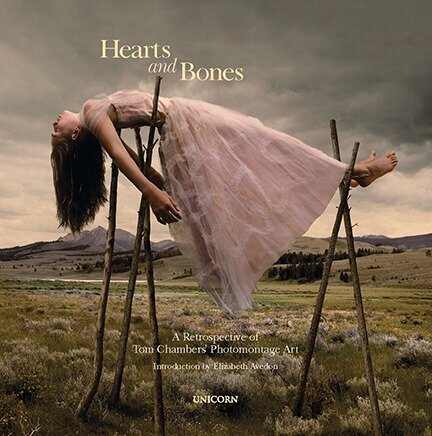 IPA 1st Place Fine Art Book Award  - I am honored to receive the First Place Fine Art Book Award from IPA (International Photography Awards) for my book Hearts and Bones published by Unicorn Publishing Group and introduction written by Elizabeth Avedon. Book is available through photo-eye bookstore. Thanks to all those who helped me to create this book.