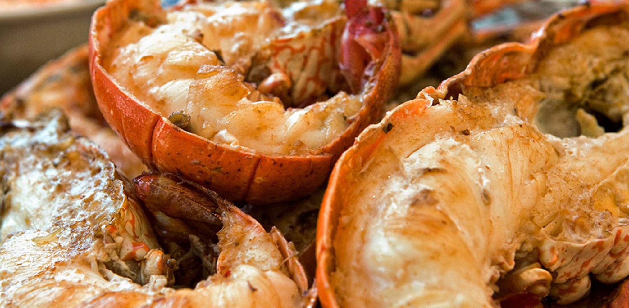 actividades-principales_baja-california_rosarito_prueba-los-tacos-de-langosta-y-otras-delicias-de-rosarito_01.jpg