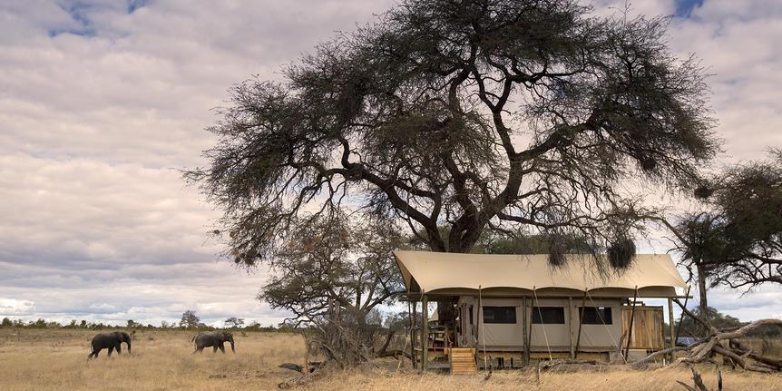 somalisa_expeditions032.jpg