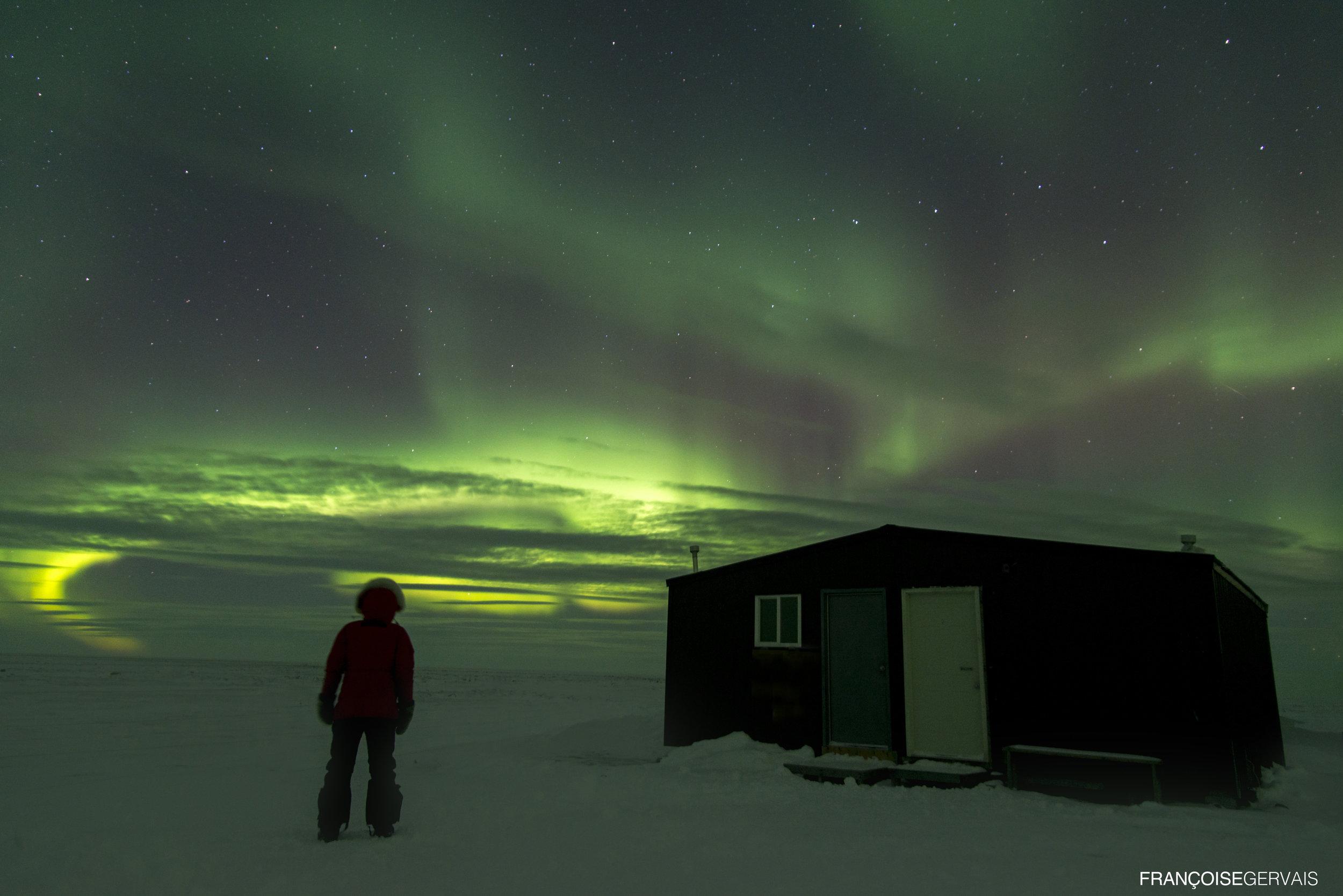Arctic Kingdom FRANCOISE GERVAISE Polar bear cabin and northern lights_DSC_1994.jpg