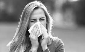Allergie en homeopathie - Homeopaat Alkmaar