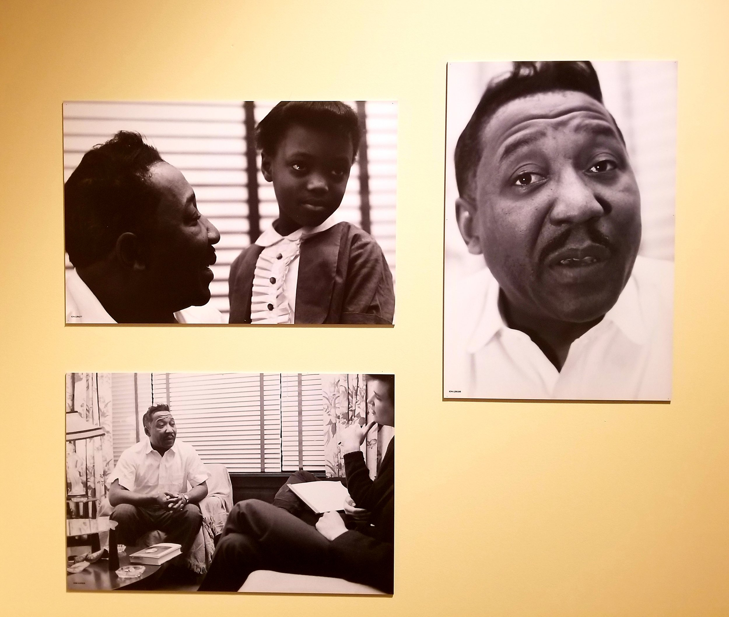Photos of Muddy Waters (Raeburn Flerlage)