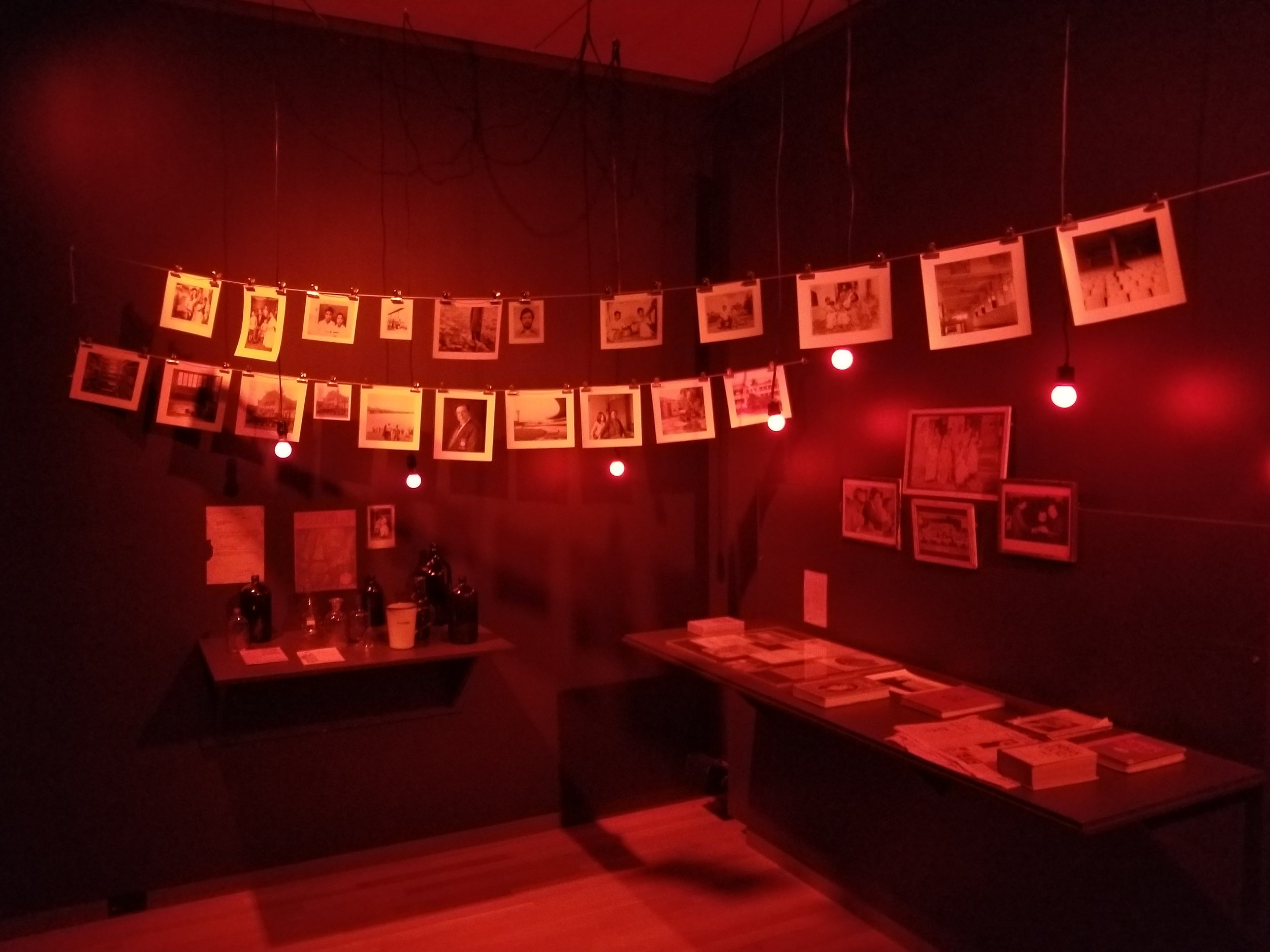 Alakananda Nag, multimedia installation