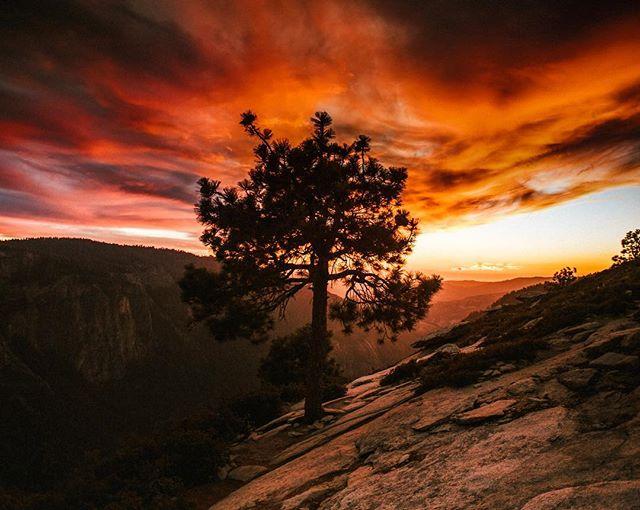 Yosemite fire. #yosemite