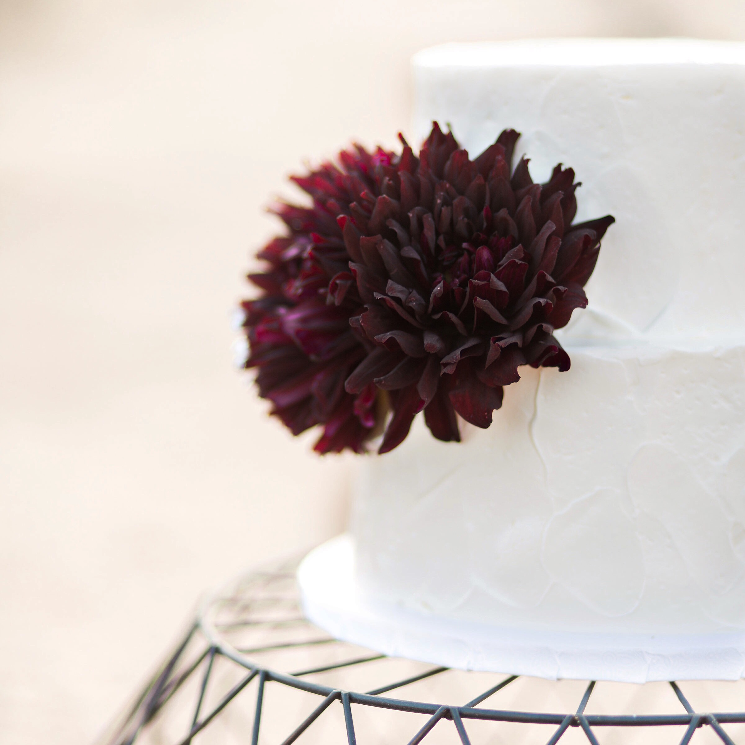 Pine & Sea Photography | desert photoshoot rustic buttercream cake