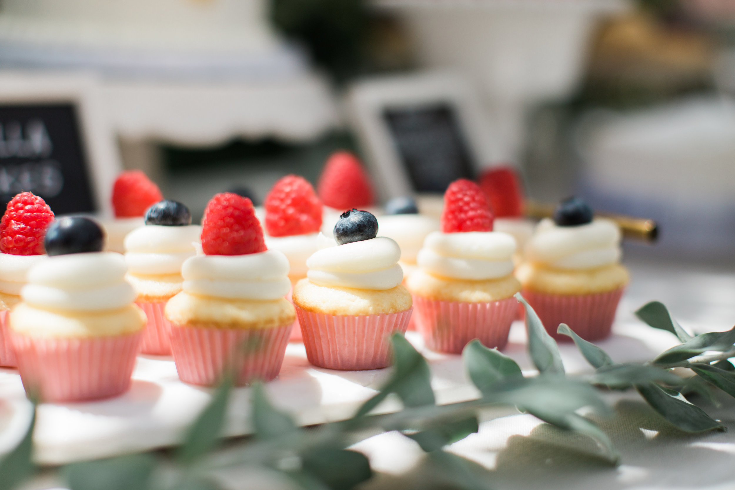 Pine & Sea Photography | mixed berry mini cupcakes garden party bridal shower