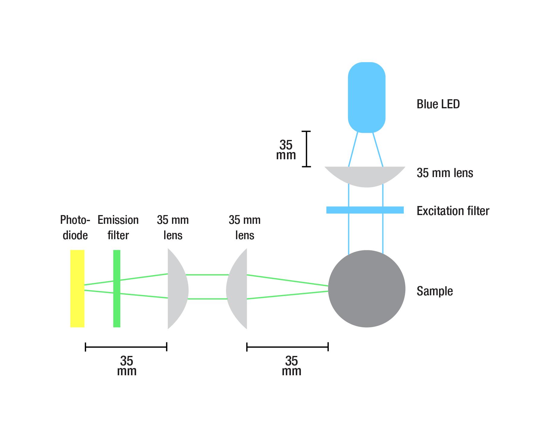 microscopy figures-02.png