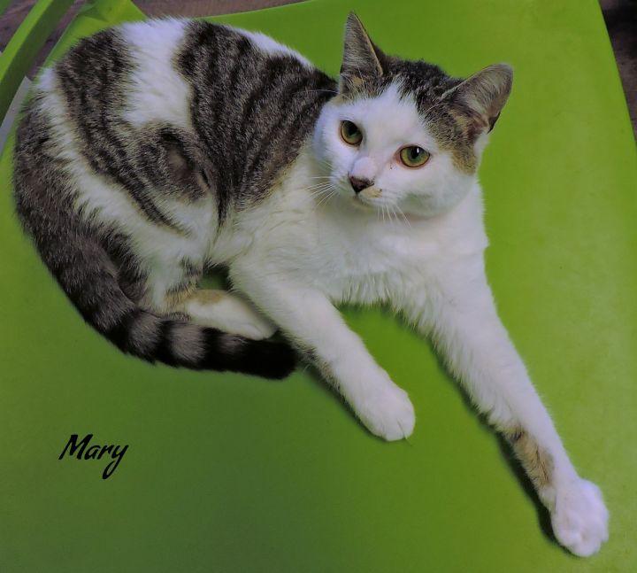 Mary -