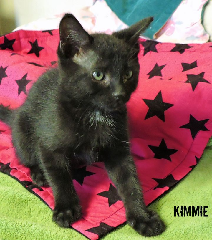 Kimmie -